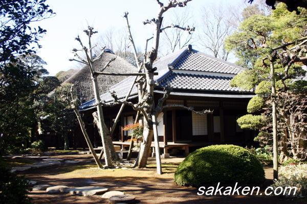 omoyagaikan32.jpg